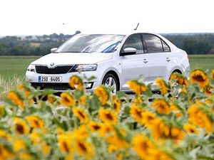 Чешский автопроизводитель официально представил модель rapid