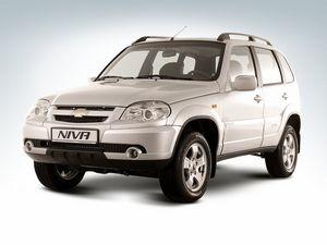Отзыв chevrolet niva (шевроле нива), двигатель 1,7-л, мкпп, 4х4, 2003 год.